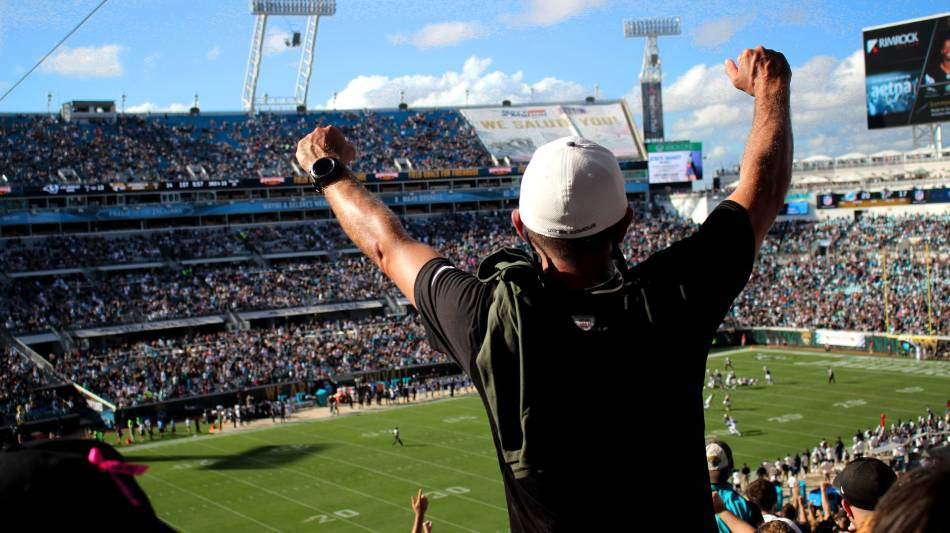 Fans cheer during NFL game.