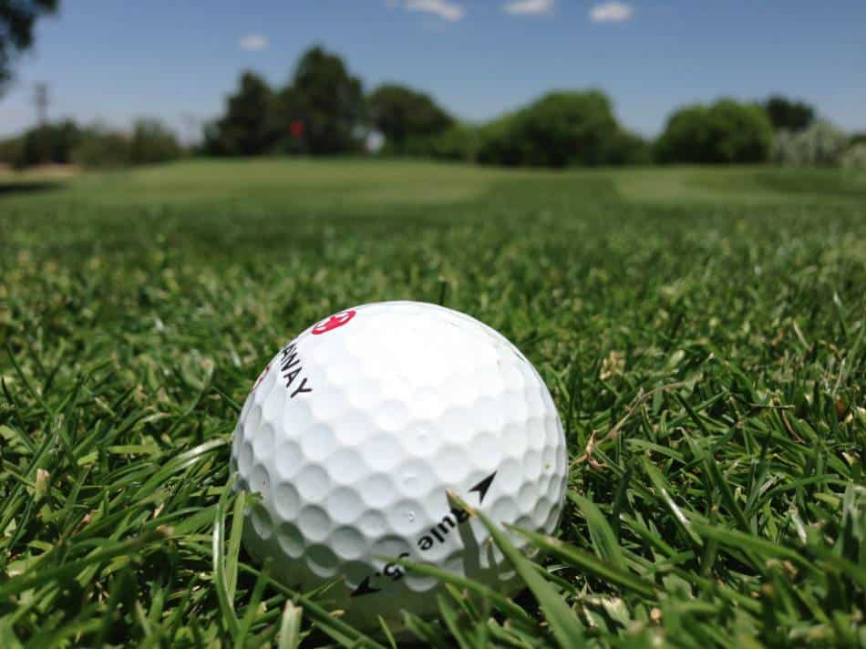 White golf ball sits in a patch of grass.
