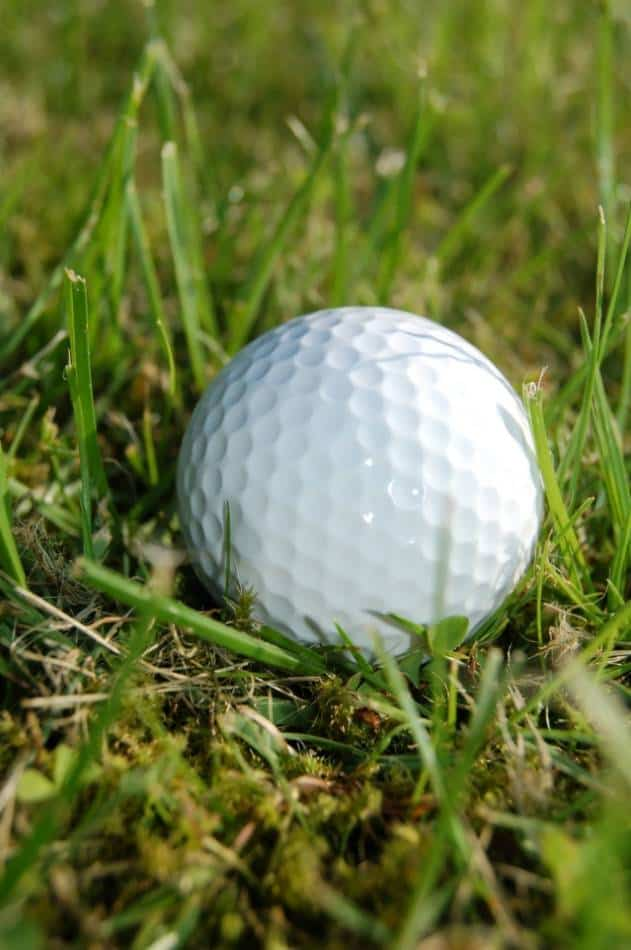 Zoomed in photo of a white golf ball in a patch of grass.
