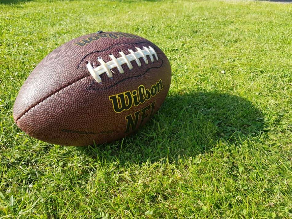 Football lying in the grass.