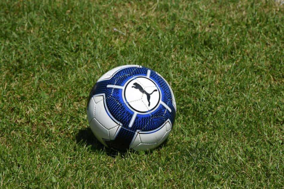 Blue and white soccer ball with a puma on it.