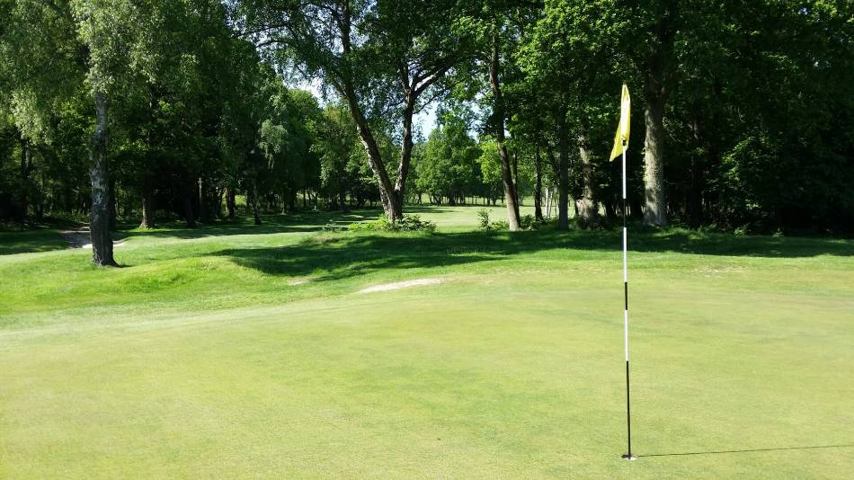 Photo of the flagstick on a hole, with trees in the background.