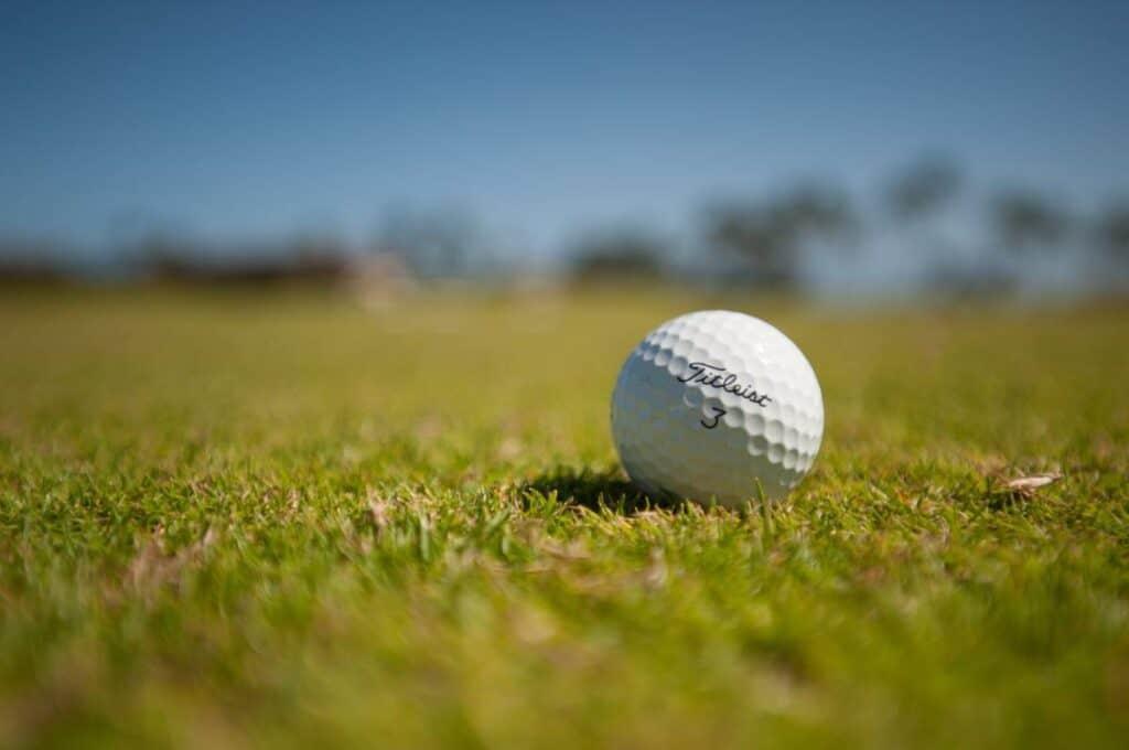A Titleist 3 golf ball sitting in the grass.