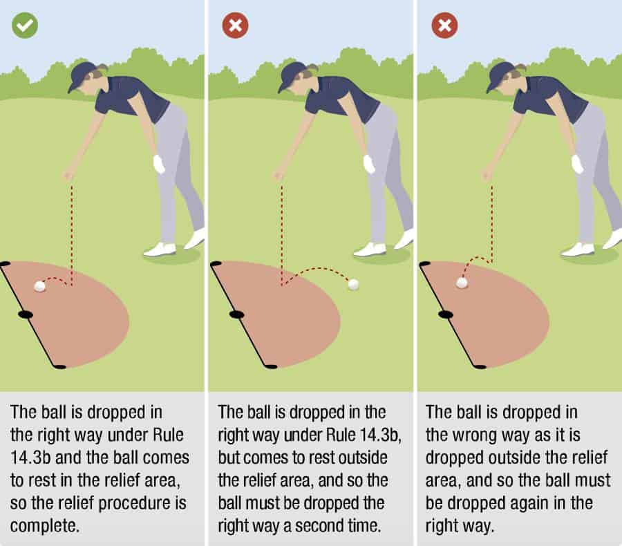 USGA Diagram 14.3c: Ball must be dropped in and come to rest in the relief area.