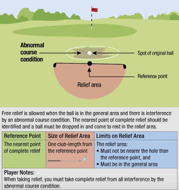 USGA Diagram 16.1b: Free relief from abnormal course condition in general area.