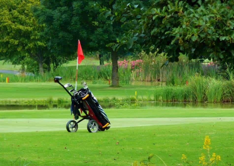 A golf bag sitting next to a green.